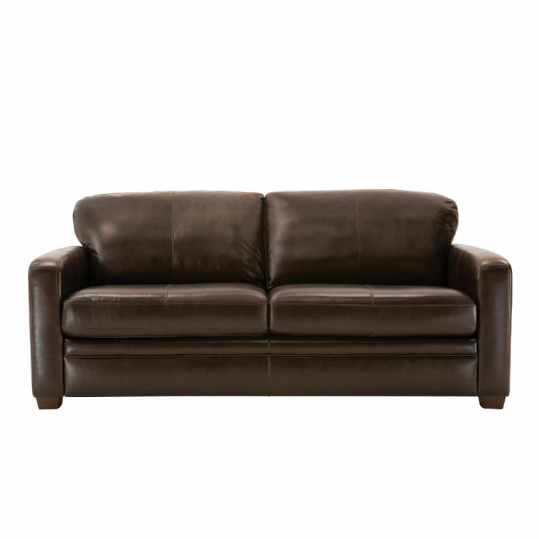 Trent Leather Queen Sleeper Sofa
