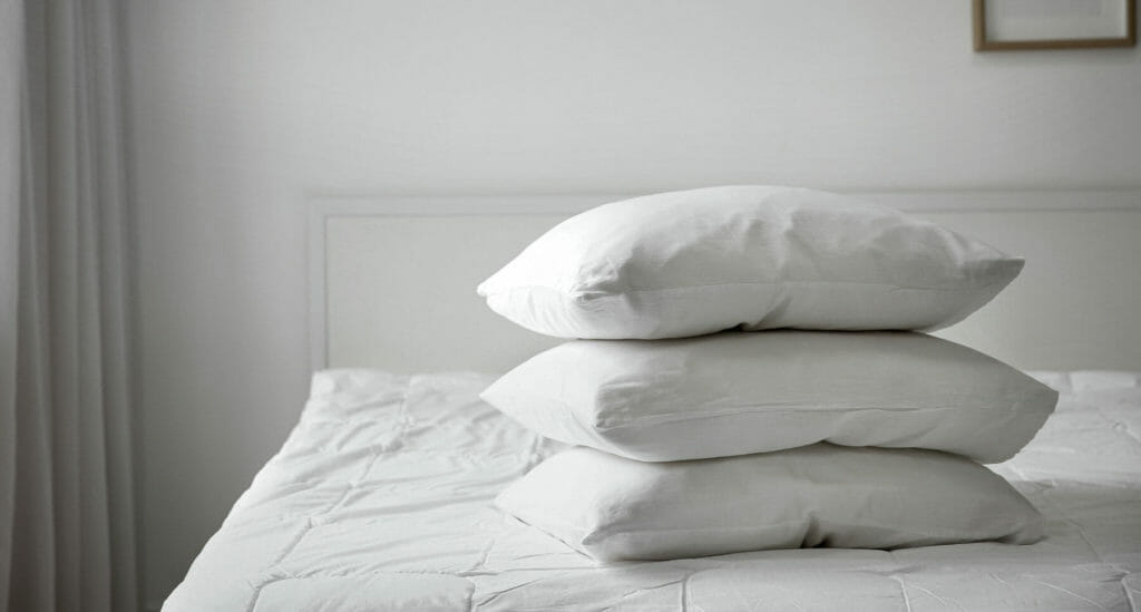 OMR Review BestDownPillows Header