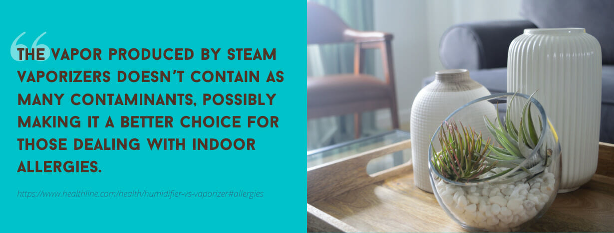 Best Humidifiers, Dehumidifiers and Vaporizers fact 3